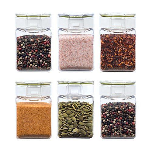 Takeya Freshlok Airtight Dry Food Storage Spice Container Set 0.3Qt/300ml/1.3cups (Set of 6), .3Qt, Clear