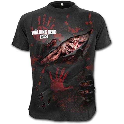 Unbekannt The Walking Dead Zombie - All Infected T-Shirt Schwarz S