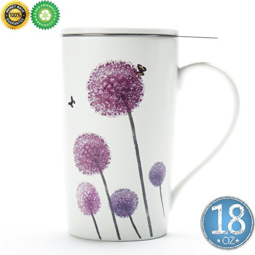 TEA SONG Tea Cup(18 oz) with Filter and Lid, Dom Dad Women Travel Teaware with Infuser Dandelion, Tea Cup Steeper Maker, Brewing Strainer for Loose Leaf Tea,Diffuser mug set for Lover Gift