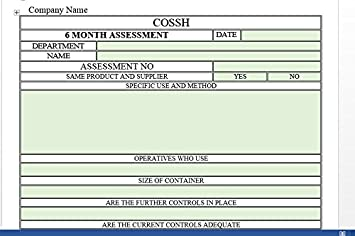 COSHH RISK ASSESSMENT TEMPLATE 2016 PLUS 6 MONTH REVIEW: Amazon.co ...