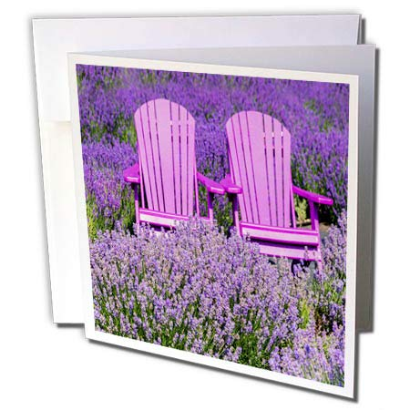 - 3dRose Roni Chastain Photography - Pink Chairs - 6 Greeting Cards with envelopes (gc_295646_1)