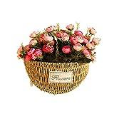Samber Handicrafts Grass Rattan Braided Basket Wall Hanging Green Plant Flowerpot Home Gardening Office Decor/A - S