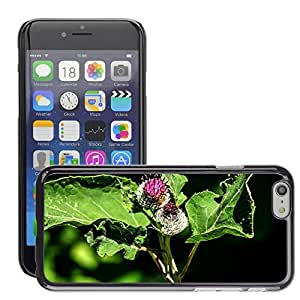 Hot Style Cell Phone PC Hard Case Cover // M00309687 Inflorescence Flower Garden Plant // Apple iPhone 6 4.7""