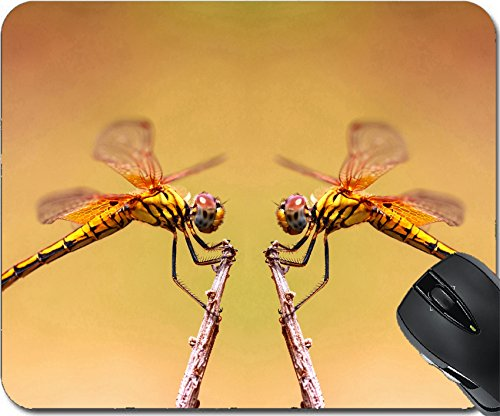 MSD Natural Rubber Mousepad Mouse Pads/Mat design: 30877384 two Dragonfly on (Natural Doublet)