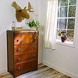 Cardboard Safari Recycled Cardboard Animal Taxidery Moose Trophy Head, Fred Brown Medium
