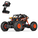 Best off road remote control car - Theefun 1:18 RTR RC Rock Crawler 2.4Ghz Remote Review