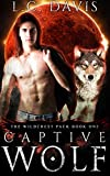 Captive Wolf: An Mpreg Shifter Romance (The Wildcrest Pack Book 1)