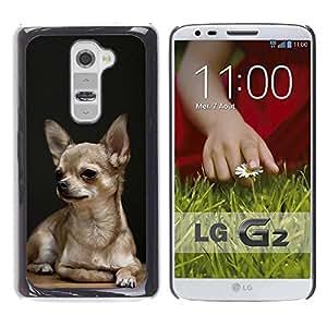 PC/Aluminum Funda Carcasa protectora para LG G2 D800 D802 D802TA D803 VS980 LS980 Chihuahua Dog Black Pet Golden Puppy / JUSTGO PHONE PROTECTOR