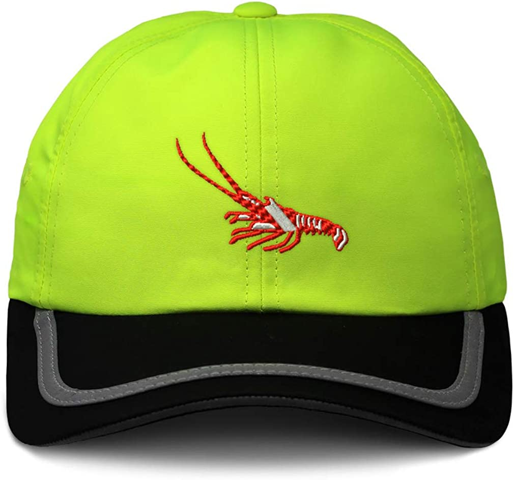 Custom Reflective Running Hat Scuba Diving Flag Lobster Embroidery One Size
