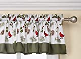 cardinal kitchen - SKL Home by Saturday Knight Ltd.  Cheerful Trimming Valance, Multicolored, 58 inches x 13 inches
