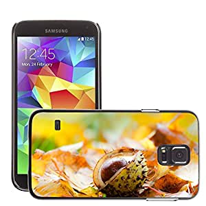 Etui Housse Coque de Protection Cover Rigide pour // M00152550 Castaña de la hoja sale del fondo // Samsung Galaxy S5 S V SV i9600 (Not Fits S5 ACTIVE)