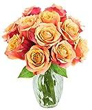 Bouquet of 12 Fresh Cut Orange Roses (Farm-Fresh, Long-Stem) with Free Vase Included