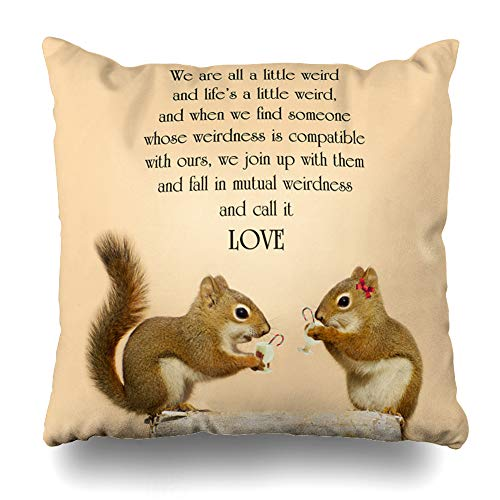 DIYCow Throw Pillow Cover Pillowcase Funny Inspirational Quote On Love by Dr Abstract Famous Motivation Squirrel Home Decor Design Square Size 18