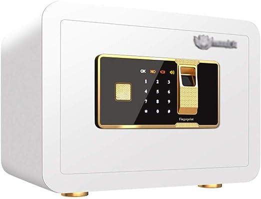 LP-LLL Caja Fuerte Digital con código de Bloqueo de combinación y Llave, Caja de Seguridad biométrica de Huellas Dactilares, Caja Fuerte Oculta para Documentos de Efectivo de joyería, 35x25x25 cm: Amazon.es: Hogar