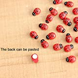 Tpingfe 20Pcs Miniature Decorations Coccinella Septempunctata Resin Crafts DIY Little Garden Decor