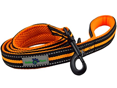 Durable Dog Leash, Soft Handle Durable Nylon Reflective Dog Leash by Bubba Paws, Nylon, Neoprene Comfort Grip, Colorful Mesh Accents, Accessory Ring, 5 Feet x 1 Inch (Orange) - Paws Nylon Leash