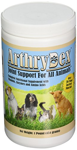 ArthryDex - 1 lb canister -