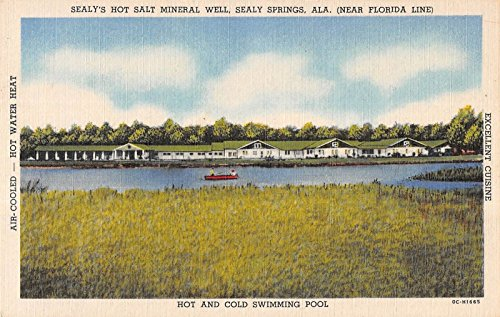 sealy-springs-alabama-sealys-hot-salt-mineral-well-antique-postcard-v21671