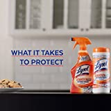Lysol Kitchen Pro Antibacterial Cleaner