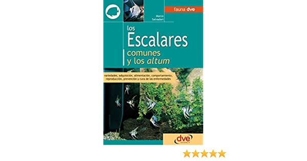 Los escalares comunes y los altum eBook: Marco Salvadori: Amazon.es: Tienda Kindle