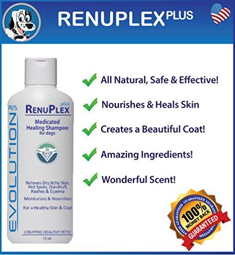 BEST Itchy Dog Shampoo. RenuPlex PLUS Medicated Dog Shampoo. SAFE, All Natural Dog Shampoo for Itchy Skin and Dog Dry Skin