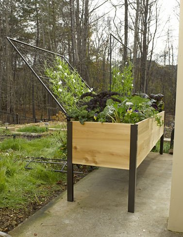 Elevated Cedar Planter Box and Space-Maker Pivoting Trellis Set, 2 x 8 by Gardener's Supply Company