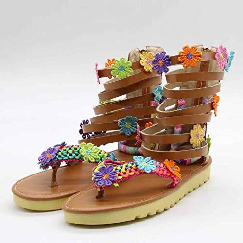 De Playa Romanas Marrón Abierta Zapatos Women Con Sandalias Chanclas Esailq Para Mujer Havaianas Punta liquidación Sandal qRF1I1