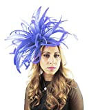Hats By Cressida Large 12 Inch devastator Sheer Ascot Kentucky Derby Fascinator Hat With Headband - Royal Blue