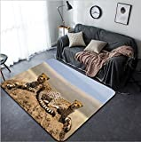 Vanfan Design Home Decorative Two cheetahs on the hill in the savannah Kenya Tanzania Africa National Park Serengeti Maasai Mara An excellent illustration Modern Non-Slip Doormats Car