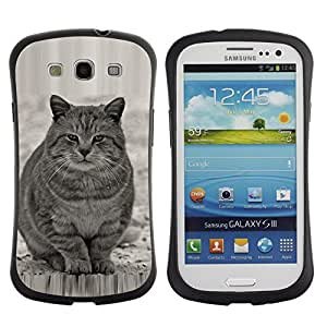 LASTONE PHONE CASE / Suave Silicona Caso Carcasa de Caucho Funda para Samsung Galaxy S3 I9300 / Cute Fat Cat Grey White Furry Beast