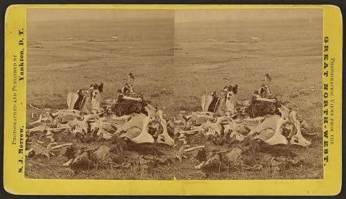 General Custer,last stand,Little Bighorn Battlefield,Indians,bones,MT,c1876