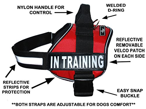 Cool Stripe Dog (Service Dog Harness Vest Cool Comfort Nylon Dogs Small Medium Large Girth, Purchase Comes 2 in Training Reflective Patches. Please Measure Dog Before Ordering (Girth 24-31