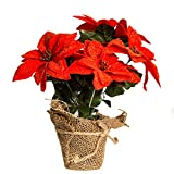 "Kurt Adler 10"" Poinsettia Plant in Burlap Pot"