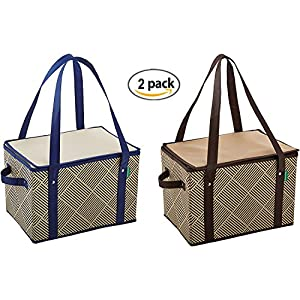 Earthwise Large Insulated Collapsible Reusable Box Shopping Grocery Bag w/ zipper top (2 Pack)