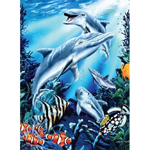 Hot K2 Signature Collection Mink Blanket, Dolphins