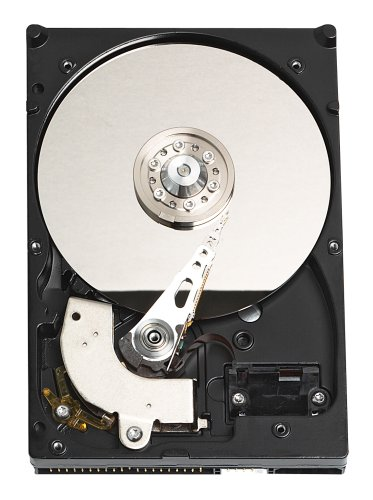 Western Digital WD3200JBRTL Caviar 320 GB PATA 3.5-Inch Hard Drive ()