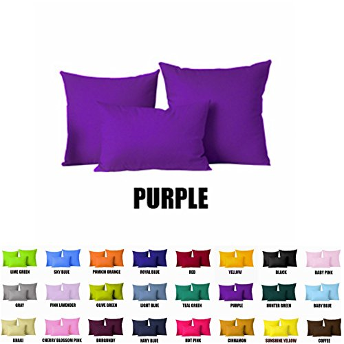 Pillow Cover With Insert Hypo Allergenic(Insert are Inclu...