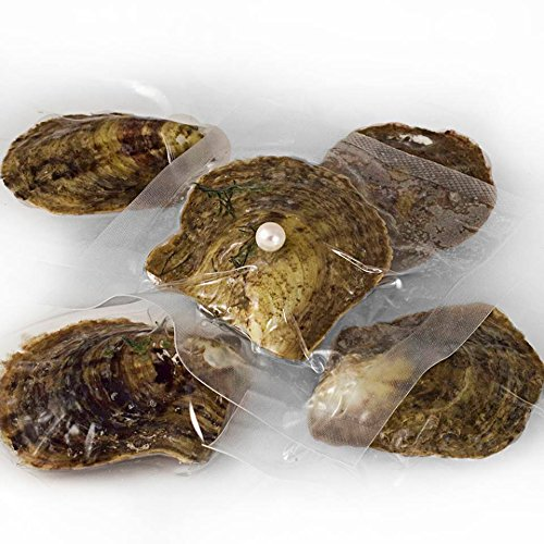 set-of-5-vacuum-packed-oysters-with-cultured-pearls
