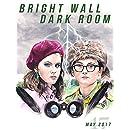 Bright Wall/Dark Room Issue 47: Childhood: May 2017 (Bright Wall Dark Room Magazine)