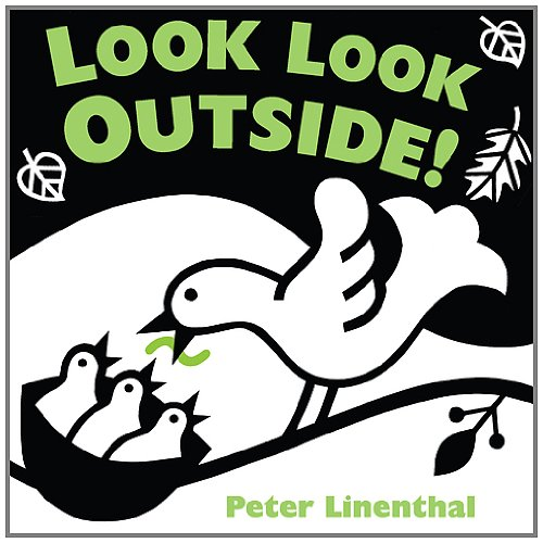 Look Outside Peter Linenthal product image
