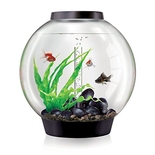 biOrb CLASSIC 60 Aquarium with LED Light – 16 Gallon, Black by biOrb