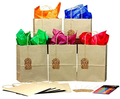BagLove Gift Bags with Color Tissue Paper and Tags - Set of 10 Medium Size Bags with Handles for Birthdays, Office Parties, Holidays - Decorate or Gift As-is