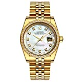 Topwatch® Sangdo Men Diamond-Accented Bezel White Shell Dial 18k Gold Band Automatic Mechanical Watch