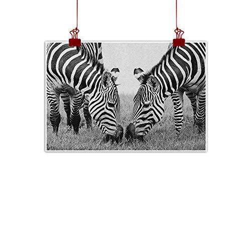 Sunset glow Wall Art Painting Print Animal,Zebras African Wildlife Burchell Safari Theme National Park Monochrome Picture, Black White 36