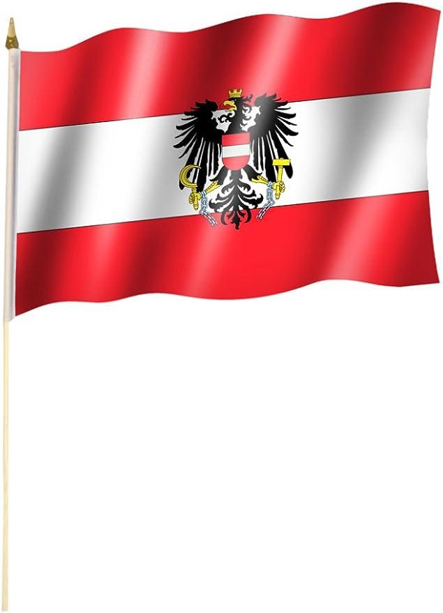 60cm Stab//Stock Stockflagge//Stockfahne UNGARN ohne Wappen Flagge//Fahne ca 30 x 45 cm mit ca