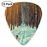 Guitar Picks - Abstract Art Colorful Designs,Skier Figure Running Dog In The Forest Winter Season Snow And Dead Nature Landscape,Unique Guitar Gift,For Bass Electric & Acoustic Guitars-12 Pack