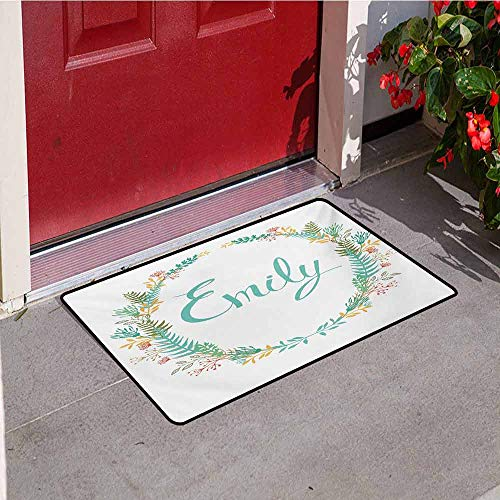 Jinguizi Emily Front Door mat Carpet Composition of Popular English Girl Name with Vintage Design Inspirations Leaves Machine Washable Door mat W31.5 x L47.2 Inch Multicolor