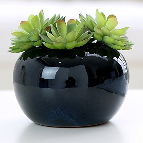 Decorative Modern Potted Green Artificial Succulent Plants w/ Glazed Black Ceramic Flower Pot - MyGift