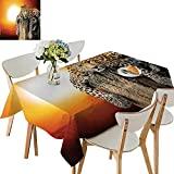 Best Avon Cat Trees - UHOO2018 Square/Rectangle Polyesters Tablecloth Leopard Sitting on Dry Review