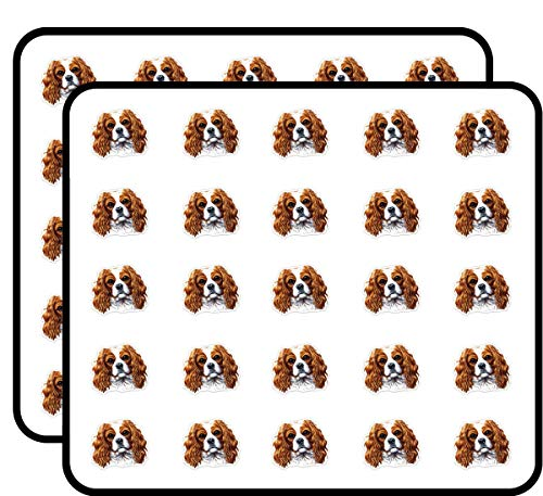 - Cavalier King Charles Spaniel Sticker for Scrapbooking, Calendars, Arts, Kids DIY Crafts, Album, Bullet Journals 50 Pack